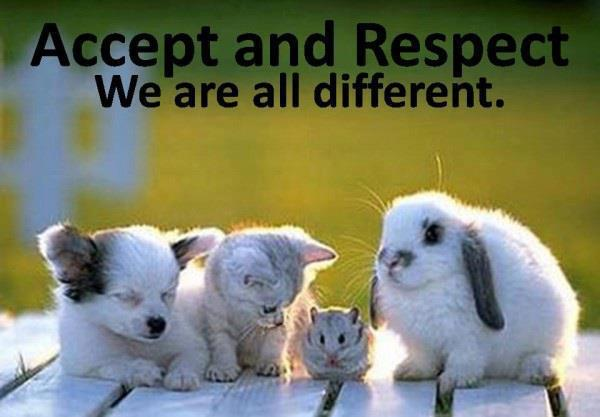 Accept and Respect. We all are different - Cute Cat Dog Puppy Rabbit Squirrel