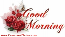 Good Morning - Red Roses