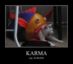 Karma - Yup Its Like That - Cat Crying