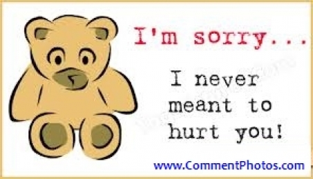 I am Sorry - I never meant to hurt you