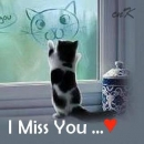I Miss You - Cute Kitty Cat