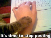 Its Time To Stop Posting - Cat Telling