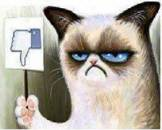 Dislike - Angry Grumpy Cat Cartoon